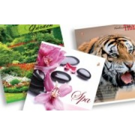 Тетрадь школьная А5 60 листов линия полноцветная обложка ассорти ТОП, 244703
