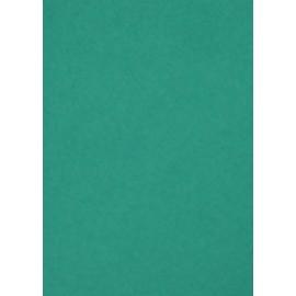 Папір для пастелі Tiziano A4 зелений № 37 biliardo 160 г/м2 середнє зерно Fabriano, 164137