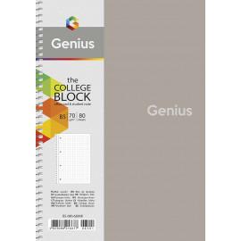 Коледж-блок B5 80 аркушів клітинка пластикова обкладинка Genius Школярик, 224047