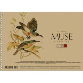 Альбом для малювання А4 30 аркушів спіраль 150 г/м2 Muse Школярик, 211702