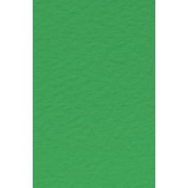 Папір для пастелі Tiziano A4 зелений № 12 prato 160 г/м2 середнє зерно Fabriano, 164112
